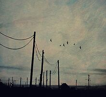 Darkness falls on Dungeness by Citizen