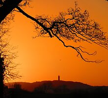Scrabo Tower, County Down, at sunset by wulliam