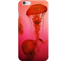 Portrait of a Jellyfish- Pink iPhone Case/Skin