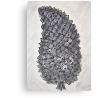 Pine Cone in Charcoal Canvas Print