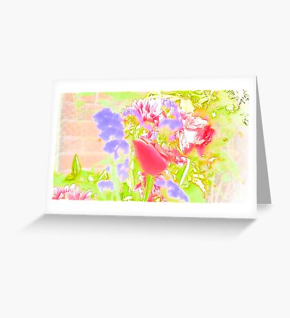 Flower in Softness Greeting Card