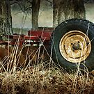 Big Wheels Keep On Churning by Amanda White