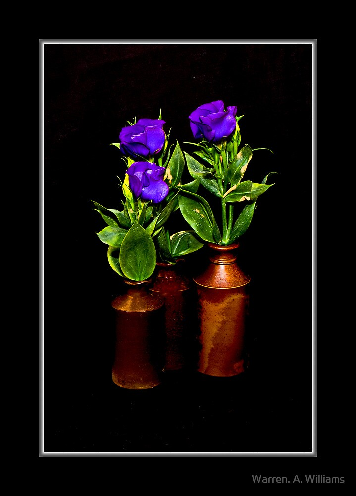 Todays Flowers 1 by Warren. A. Williams