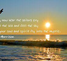 Into The Mystic by ©Dawne M. Dunton