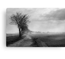 Misty Marsh Canvas Print