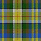02370 Honolulu County, Hawaii District Tartan Fabric Print Iphone Case by Detnecs2013