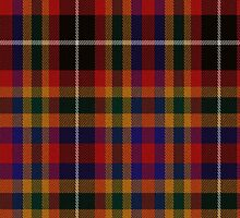 02372 Mecklenburg County, North Carolina E-fficial Fashion Tartan Fabric Print Iphone Case by Detnecs2013