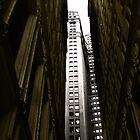 NY in 20 pics: #6 by Puchu