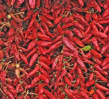 Red Chilli by MikeSquires