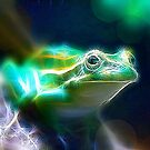 Southern Bell Frog by Heike Richter