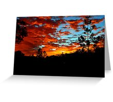 Allambie Sunrise. Cedar Creek, Queensland, Australia. Greeting Card