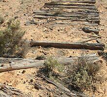 Joe Mortelliti Gallery - Ruins of a railway, Old Ghan Railway, South Australia. by thisisaustralia