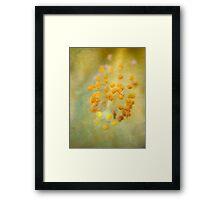 Lemon-scented dreams Framed Print