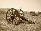 Cannons on the Battlefield by FrankieCat