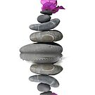 Balanced Stones Flower by kvvpst
