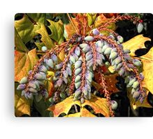 Grape Holly Canvas Print