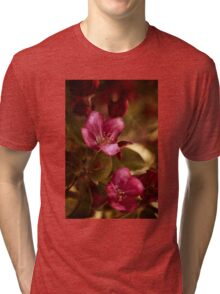 potential - velvety crababble blossoms Tri-blend T-Shirt