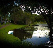 Dusk Lake by Megan Shapcott