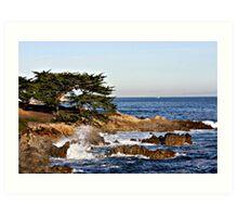 """Cypress By The Sea"" Art Print"