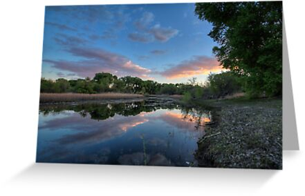 River Blues by Bob Larson