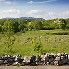The Stone Fence by Emmeci74