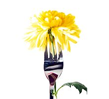 silver fork stuck into dahlia Photographic Print