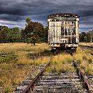 Abandoned Railway Carriage - Premer NSW Australia by Bev Woodman