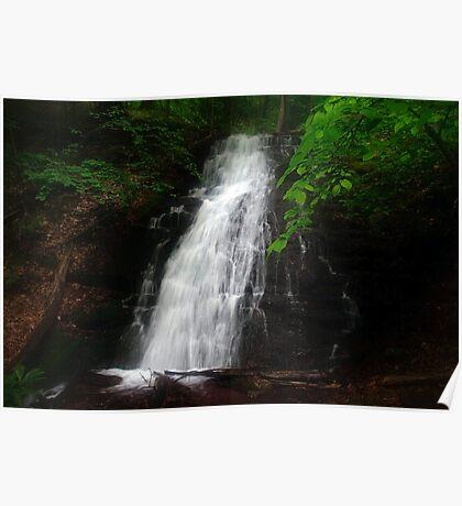 Garvey Springs Waterfall Poster