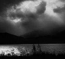 Night Glow by Mick Kupresanin