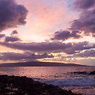 Maui, Hawaii by Barb White