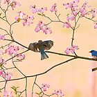Bluebirds in Pastel Pinks by Randy & Kay Branham