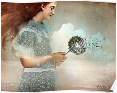 Make a Wish by Catrin Welz-Stein