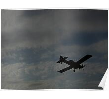 Fly In The Sky Poster