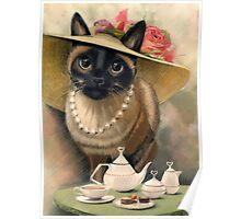Lady Cat Poster