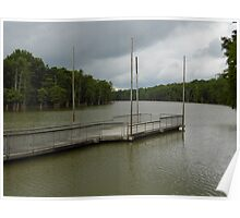 Cook's Lake- White River, Arkansas Poster