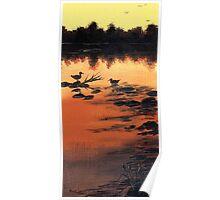 River Ducks Poster