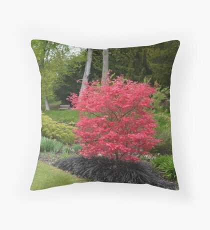 Acer Throw Pillow