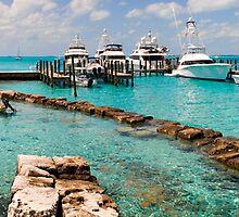 Staniel Cay Yacht Club and Marina, Exuma, Bahamas by Shane Pinder
