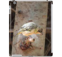 Weaverbird iPad Case/Skin