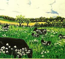 Black Cows Grazing by SLEdwards