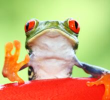 """""""Live long and Prosper"""" Red-eyed Tree Frog Sticker"""