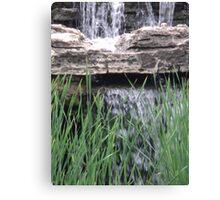 Splash above the Reeds Canvas Print