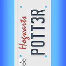 Potter License Plate by Chrisbooyahh