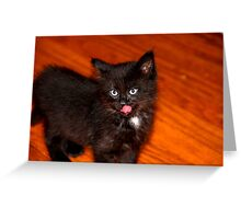 Silly Kitten Greeting Card