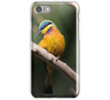 Blue-breasted bee-eater iPhone Case/Skin
