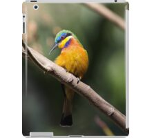 Blue-breasted bee-eater iPad Case/Skin