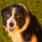 Border Collie by Doreen Erhardt
