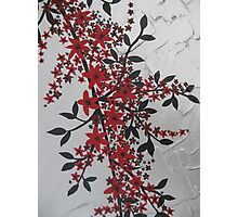 red and black blossom- bold and modern Photographic Print