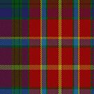 02396 Devon 2000 Fashion Tartan Fabric Print Iphone Case by Detnecs2013