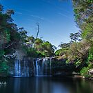 Nellie's Glen, Illawarra Escarpment, NSW, Australia by Stephen  Jarrett